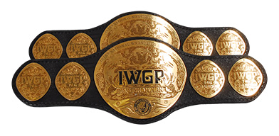 IWGP HEAVY TAGWEIGHT CLASS
