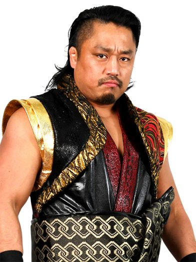 https://www.njpw.co.jp/wp-content/uploads/2016/10/goto_profile-392x523.jpg