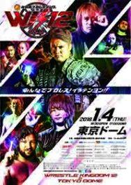 Post image of NJPW: Wrestle Kingdom 12